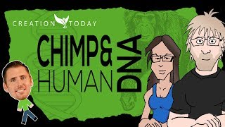 Human and Chimp DNA: Playing the Percentages (feat. Shannon Q) - Creation Today Claims