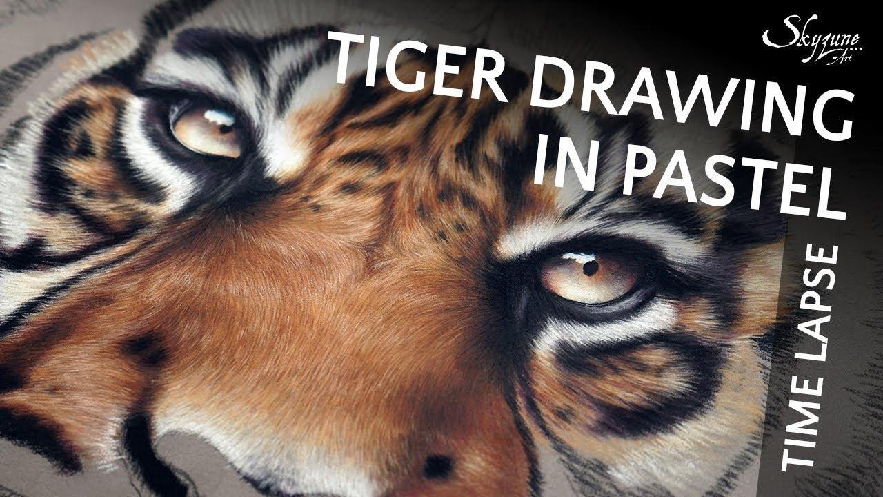 tiger drawing in pastel by skyzune art youtube. Black Bedroom Furniture Sets. Home Design Ideas