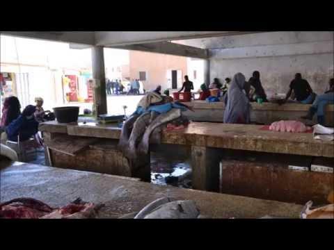 Nouakchott Fishmarket 22 Feb 2013