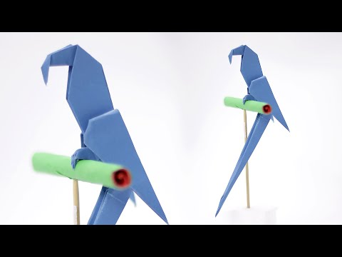 origami-macaw-parrot---how-to-fold