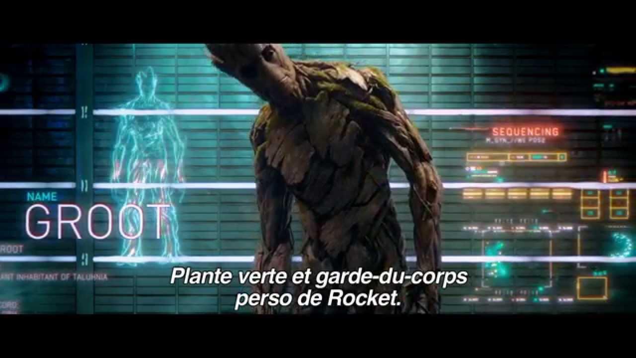 Les Gardiens de la Galaxie : Groot (Vin Diesel)