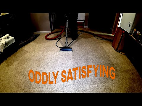 Satisfying DIRTY Basement Carpet Cleaning