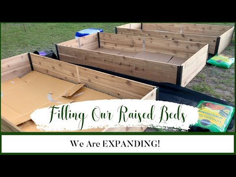 We Are Expanding the Garden Filling The Raise Garden Beds Raised Beds Gardening