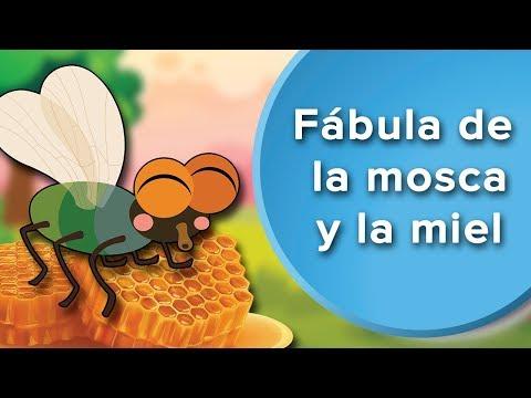 F�bula de la mosca y la miel | Cuentos con moraleja para ni�os