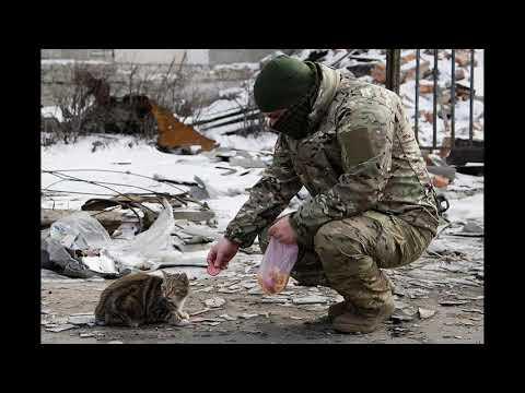 Донбасского ополченца расстреляли вМариуполе!