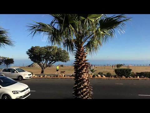 Cape Town: Cape Peninsula tour, Cape of Good Hope, Simon's Town