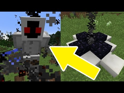How to Spawn ENTITY 303 in Minecraft!!! (WARNING! SCARY)