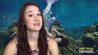 """Tail Mail"" with Weeki Wachee Mermaid Katie from Cambelle in Lakeland, FL"