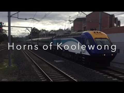 Horns of Koolewong