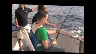 Video Atuns em Cascais 10 Outubro 2012 download MP3, 3GP, MP4, WEBM, AVI, FLV Desember 2017