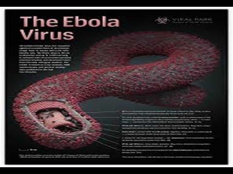 56  West African Ebola Outbreak