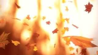Падающие осенние листья - Falling leaves