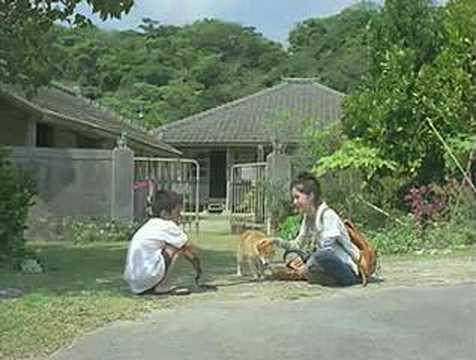 OLYMPUS 30sec : Aoi Miyazaki