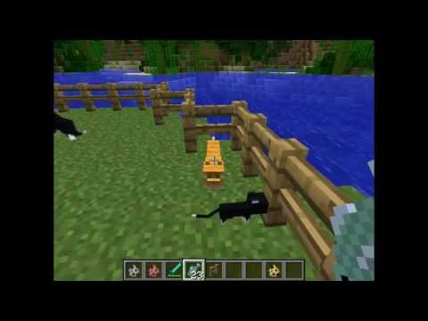 Minecraft #3 cats and dogs - YouTube