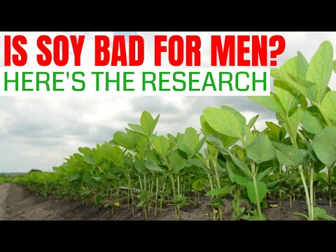 Is Soy Bad For Men? Discover the Answer From The Latest Research