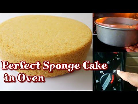ഓവനിൽ സോഫ്റ്റ് കേക്ക് ഉണ്ടാക്കുന്ന വിധം  how To Make Perfect Soft Sponge Cake In Oven  cake Recipes 