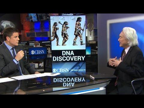 What is Denisovan DNA?