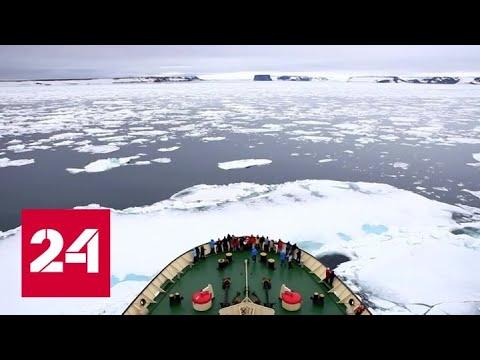 Жизнь на полюсе уменьшает человеческий мозг - Россия 24