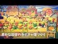 【あつ森・島クリ】マイデザで田舎のカボチャ畑づくり【Animal Crossing】Pumpkin patch creation - custom design making