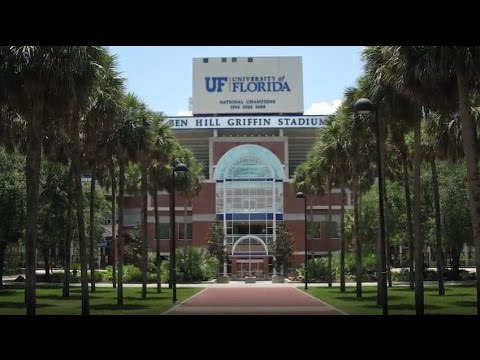 University of Florida - 5 Things You Must Do On Campus