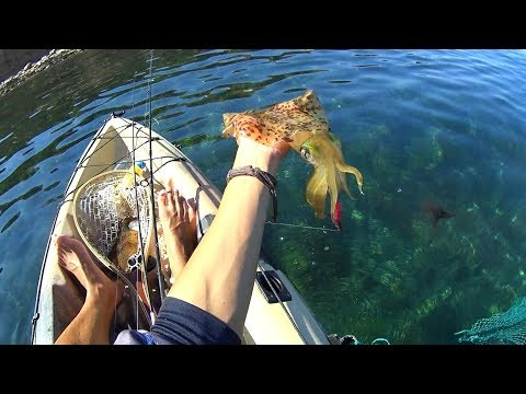 Seacliff Kayak Fishing For A Mixed Bag In Crystal Clear And Calm Waters!