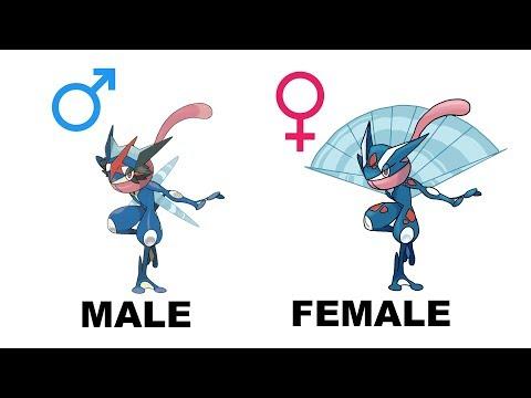 All Starters Pokemon Evolution Gender Difference Fanart