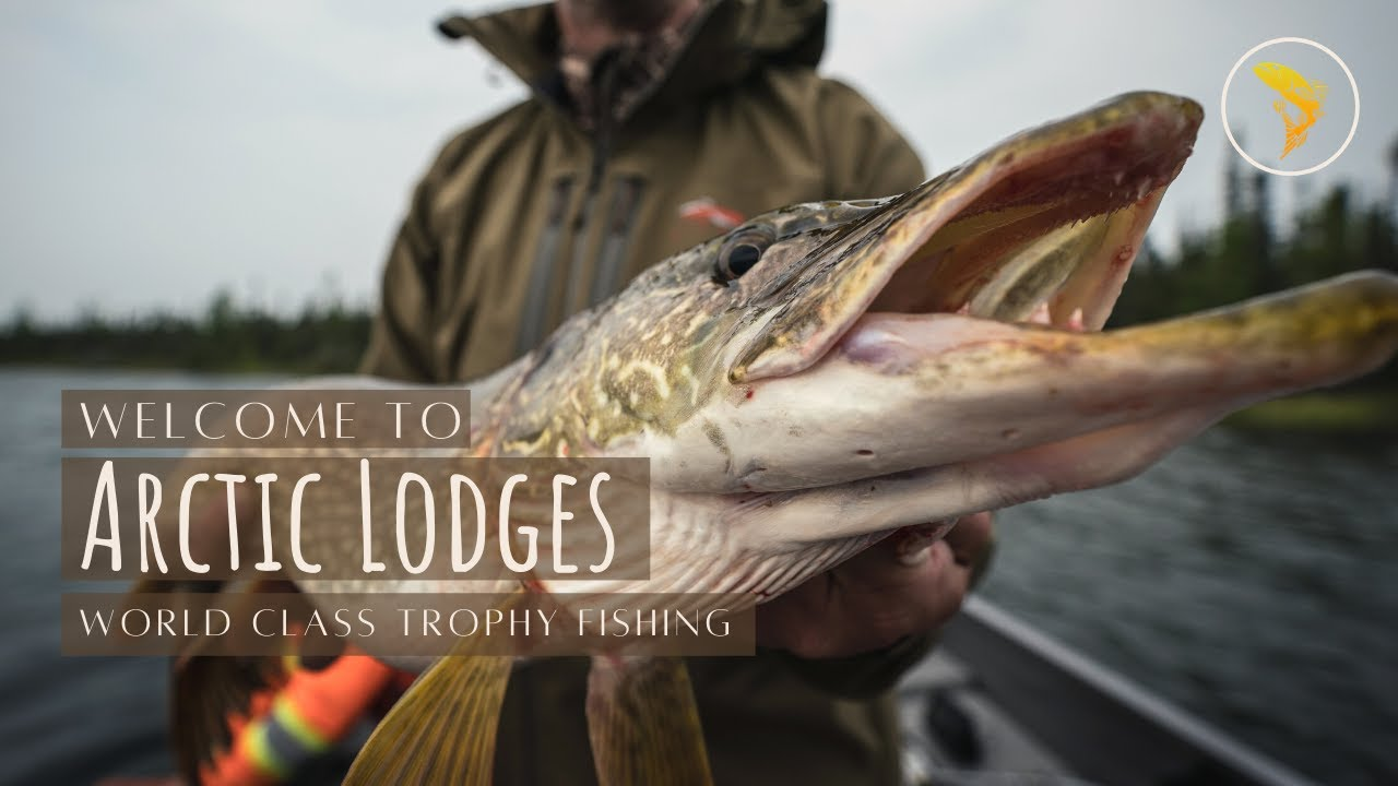 Saskatchewan Fishing Lodge - a Luxury Fly In Fishing Trip - Arctic