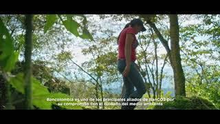 BanCO2 es el esquema que le paga a los campesinos por cuidar los ecosistemas   El Espectador