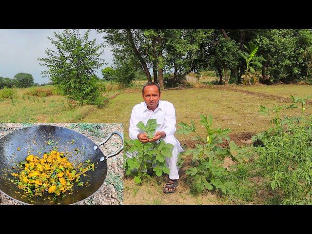 Bhindi Chicken Masala Recipe | Okra Chicken Recipe by Mubashir Saddique | Village Food Secrets