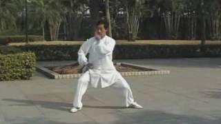 Chen Style Tai Chi form - 83 movement Yi Lu