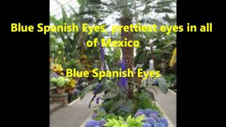 Spanish Eyes with lyrics - Engelbert Humperdinck - Maroble.com