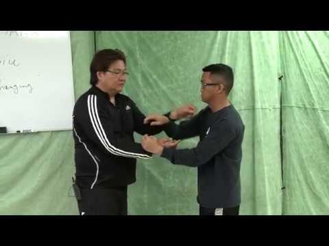 Sifu Gary Lam on HUEN SAO & CHANGING