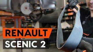 Wie Rippenriemen RENAULT SCÉNIC II (JM0/1_) wechseln - Online-Video kostenlos