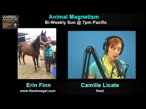 Animal Magnetism, November 1st, 2015 with guests Erin Finn and Maryam Faresh