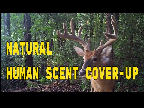 Natural Human Scent Cover up (Deer Hunting Secret)
