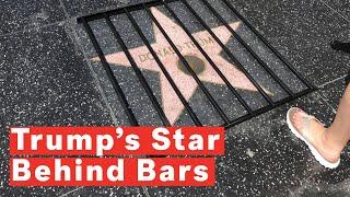 Trump's Hollywood Walk Of Fame Star Put Behind Bars