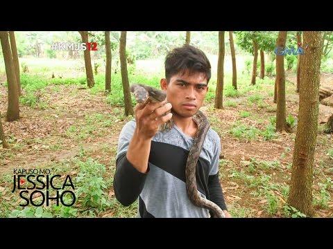 Kapuso Mo, Jessica Soho: King Cobra Hunter ng Compostela Valley