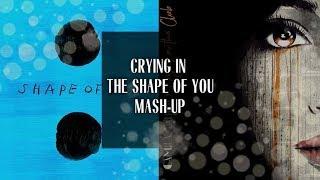 Video Crying In The Shape of You - Ed Sheeran x Camila Cabello - Mashup download MP3, 3GP, MP4, WEBM, AVI, FLV Januari 2018