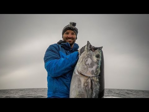 Bluefin Tuna Fishing Off Cape Cod (RUN & GUN - October 2018)
