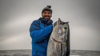 Bluefin Tuna Fishing off Cape Cod (RUN & GUN - October 2018)