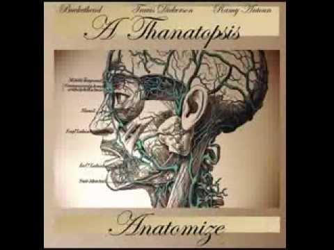 Full album Thanatopsis  Anatomize