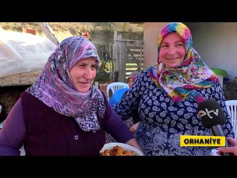 KARIŞ KARIŞ EDİRNE ORHANİYE'DE
