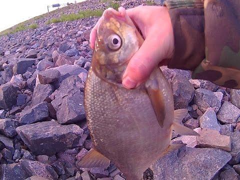 рыбалка на дамбе в финском