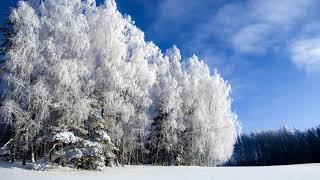 П И Чайковский Симфония 1 Зимние грёзы 2 часть