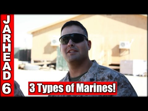 3 Types of Marines!