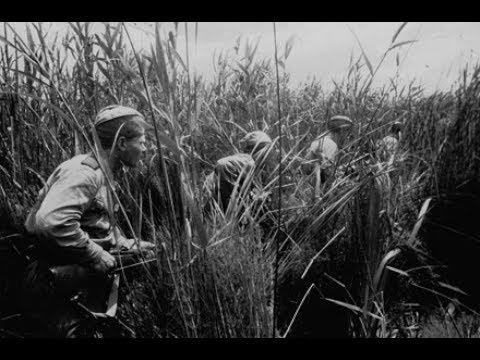 Разведка.  Восточно- Прусская Операция.