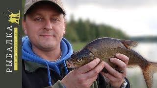 Рыбалка в Финляндии на фидер . Озеро Сайма - Часть первая