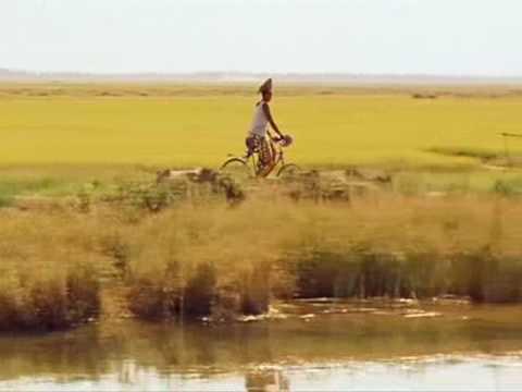 La vie sur terre  Abderrahmane Sissako  Folon  Salif Keita