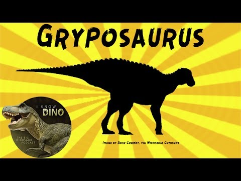 Gryposaurus: Dinosaur of the Day