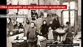 Den industriella revolutionen ur olika perspektiv